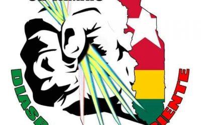 Déclaration de la Diaspora Consciente relative au Haut Conseil de la Diaspora de Robert Dussey et de Faure Gnassingbé.